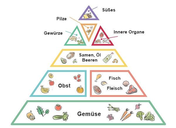 paleo ernährungsweise