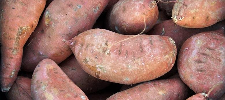 Süßkartoffeln Zum Abnehmen Vorteile