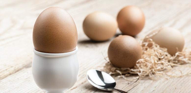 Machen Proteine Schlank? Und Ob!