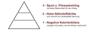 fettabbau pyramide